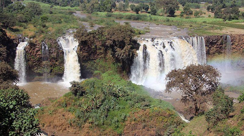 Nil Błękitny